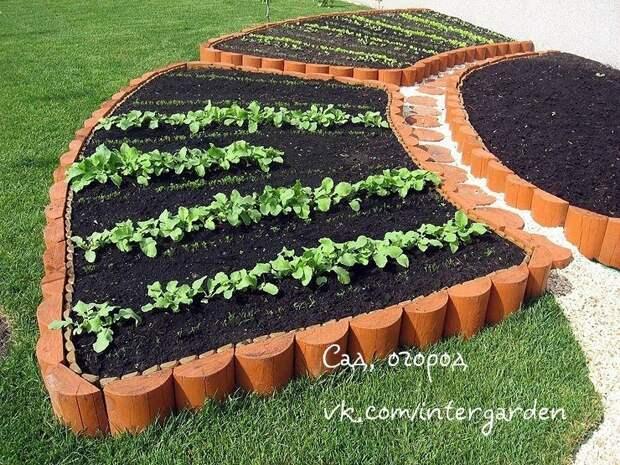 Как оригинально оформить огород. Французский огород своими руками