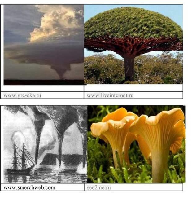 Физические основы влияния на психику торсионных полей, СВИ (спирально-вихревых излучений): визуализация проблемы