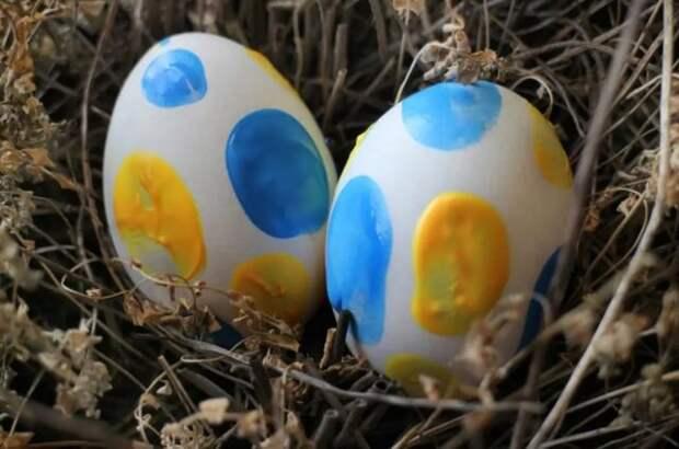 два белых яйца с синей и желтой краской