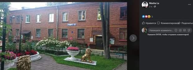 Фото дня: цветы и «золотые тигры» возле дома на Клары Цеткина