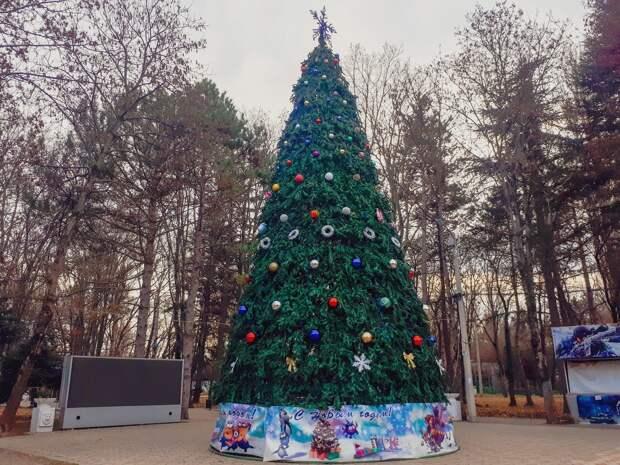 Ученики симферопольских школ сделали новогодние игрушки для ёлки Детского парка