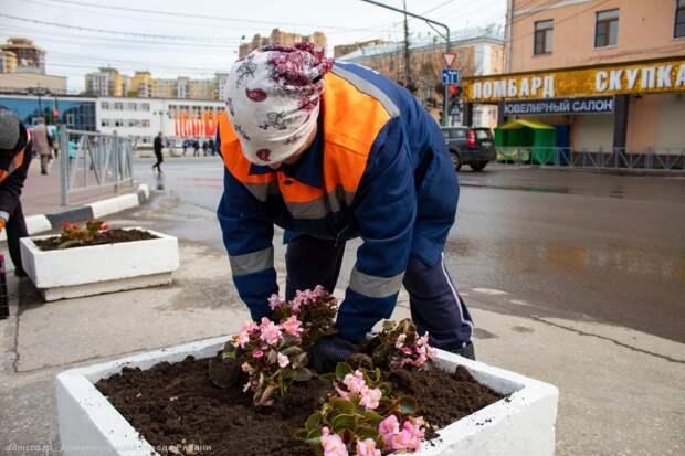 Мэрия Рязани отчиталась об уборке городских улиц