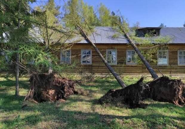 После урагана более пяти тысяч жителей Никольского района остались без света