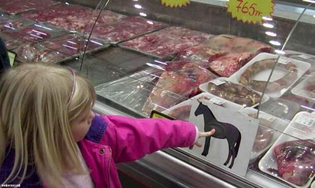 Почему русские не едят лошадей?