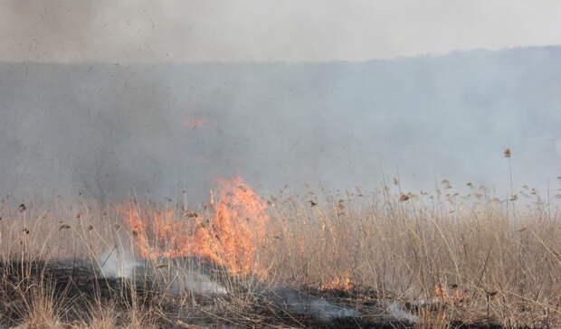 Горим: вПриморском крае введён всеобщий противопожарный режим