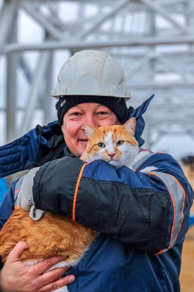 Дружный коллектив - залог успешной работы. Фото: Кот Моста/VK