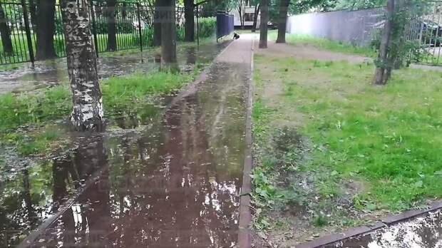 «Заборчик поставили и всё»: жители Замшиной улицы жалуются на потоп – видео
