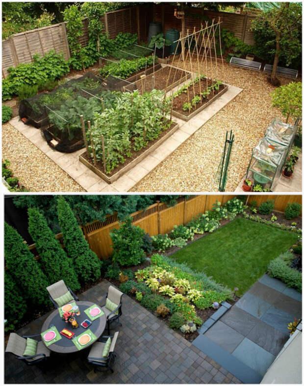 Зонирование территории сада.   Фото: lowpicx.pw.