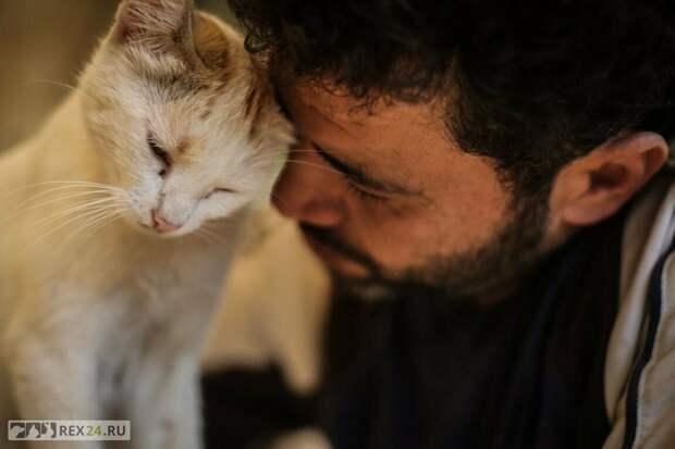 Бомж и кот Васька