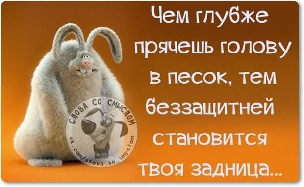 5672049_133951460_5672049_1423770103_frazki12 (604x372, 50Kb)
