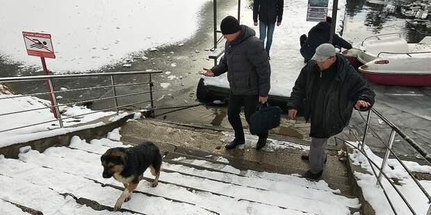 Собака ушла со своим спасителем. Фото: Леонид Карпов