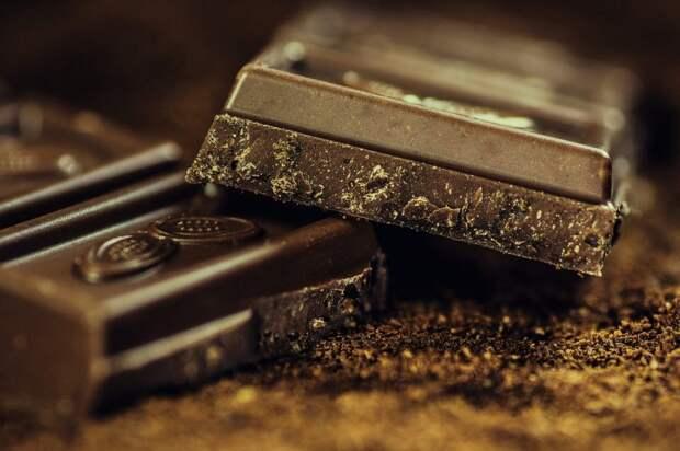Госслужащая из Куркина освоила профессию шоколатье