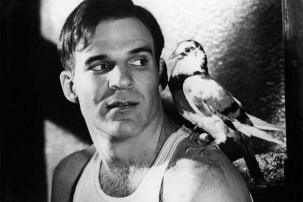 Одиннадцать лучших кинообразов Стива Мартина