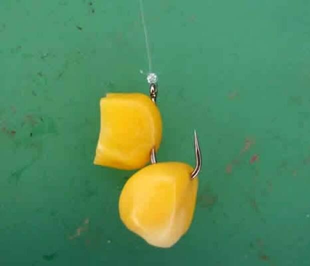 ловля рыбы на кукурузу консервированную