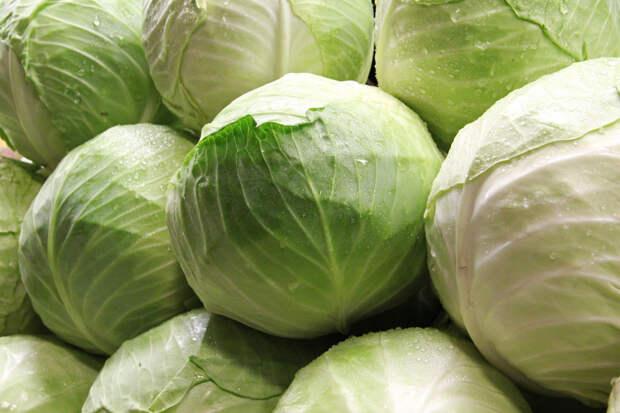 Как сохранить белокочанную капусту свежей до весны