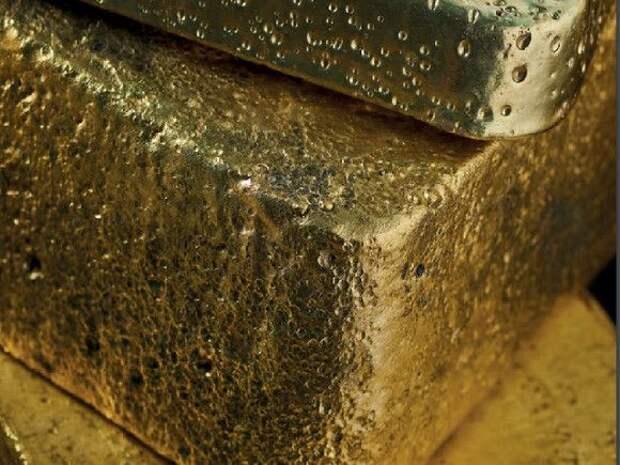Петицию против золотодобычи у Телецкого озера из списка ЮНЕСКО на Алтае подписали 30тыс. человек