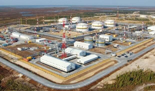 Более 1млн рублей придется заплатить «РН-Пурнефтегазу» заразлив нефти изагрязнение леса