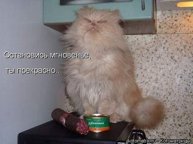 1348323982_getImage_19 (600x450, 49Kb)