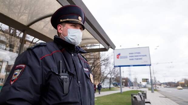 Российский политолог отметил профессионализм не поддавшихся на провокации Галяминой полицейских