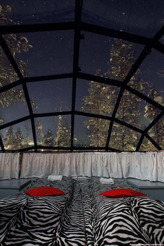 Уникальная гостиница в Лапландии со стеклянными иглу