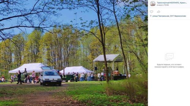 Петербуржцам не понравился корпоратив на территории памятника природы «Дудергофские высоты»