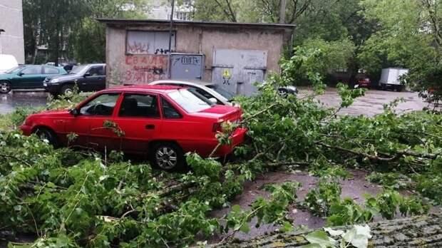 Штормовое предупреждение из-за ливней иветра объявили 4июня вРостовской области