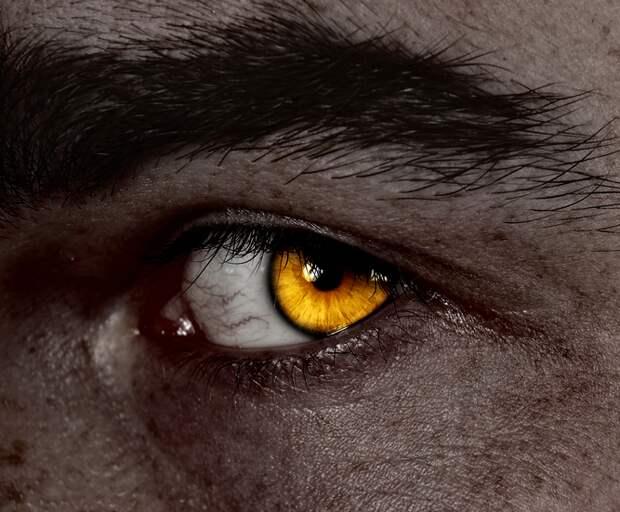 Дурной глаз: пристальный взгляд | OLGA MISBITCOIN | Яндекс Дзен