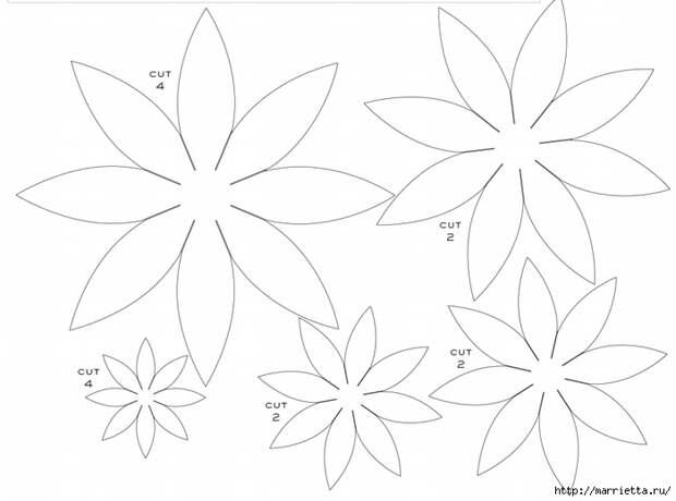 ГЕОРГИНЫ из бумаги. Шаблоны для распечатки (8) (700x520, 139Kb)