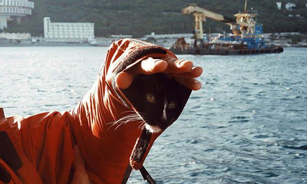 «Потому что так веселее»: тагильчанин и его кот штурмуют горы и сплавляются по рекам