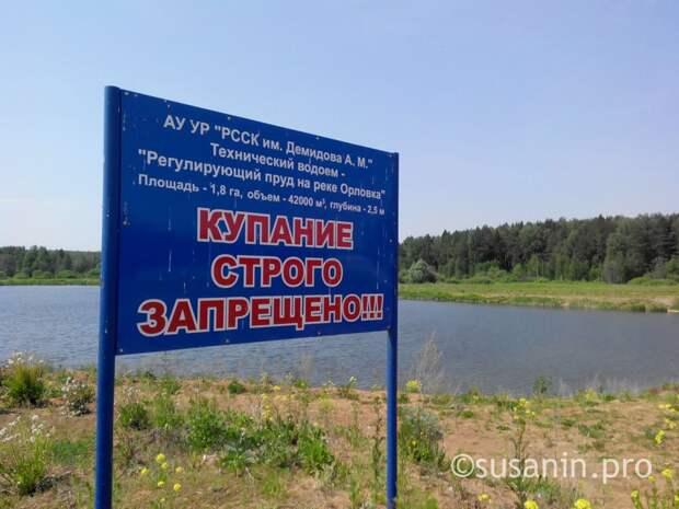 Три человека погибли летом на водоёмах Ижевска