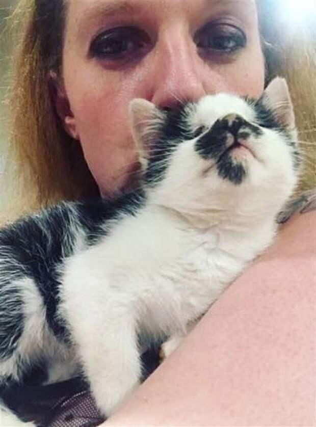 Случайно услышав крик слепого котёнка в приюте, женщина просто не смогла уйти оттуда без него