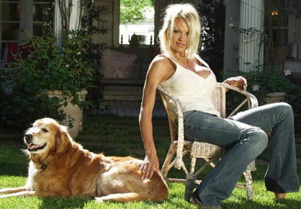 Многие знаменитости любят животных