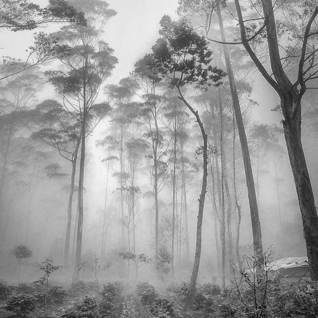 Hengki Koentjoro и его шикарная пейзажная фотография