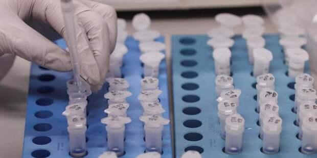 В Белоруссии зафиксировали шесть случаев заболевания коронавирусом
