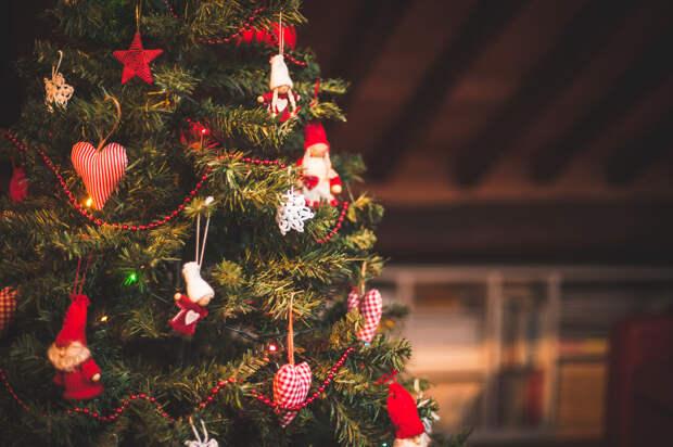 МЧС советует россиянам сразу после праздников вынести елку из квартиры