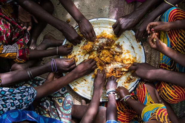 Миру предрекли голод библейского масштаба: перед какими странами встанет вопрос продовольственной безопасности