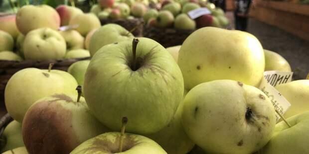 Минсельхоз России объяснил рост цен на яблоки