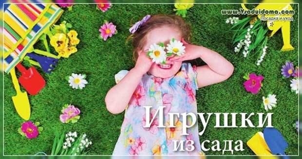 Цветы для детского сада (детской лужайки)