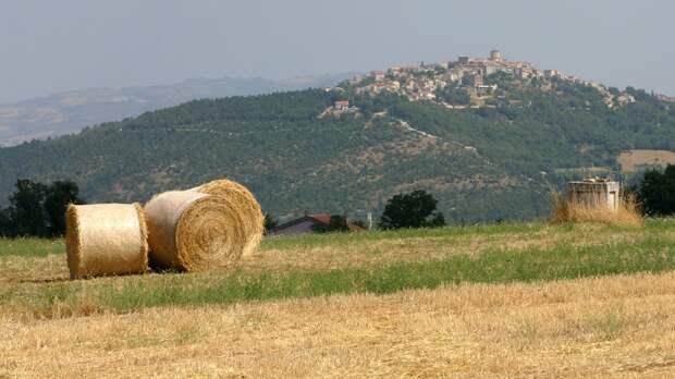 По 700 евро в месяц всем, кто поселится в деревне