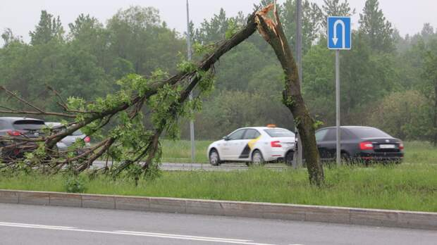 Погодные условия в Москве повлияли на график движения общественного транспорта