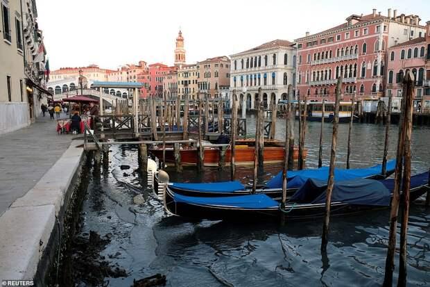 Вот как выглядит Венеция после наводнения: 5 фото