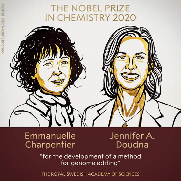 Нобелевскую премию по химии вручили за разработку метода редактирования генома
