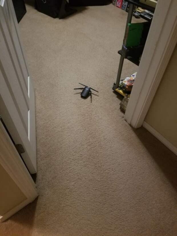 Забыл, что оставил тут роутер, и он напугал меня