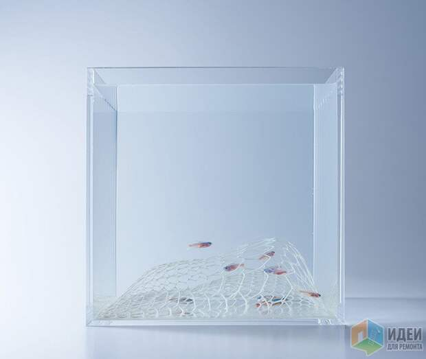 Подводная жизнь: дизайн аквариума по-японски