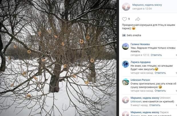 Фото дня: кормушка для птиц из сушек появилась в Марьине