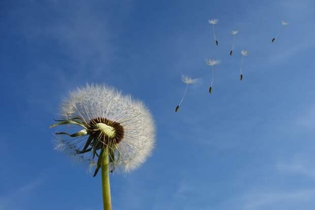 Жителей Удмуртии предупредили об усилении ветра 2 мая