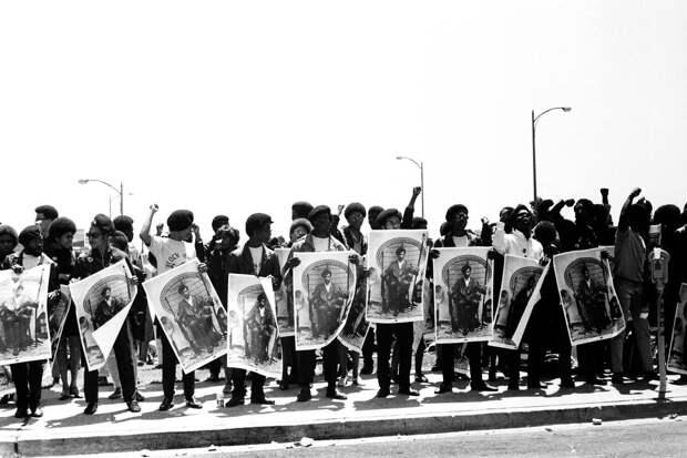 Социальные конфронтации в США 1960-х - 1970-х годов: Леворадикальная Партия черных пантер   (21)
