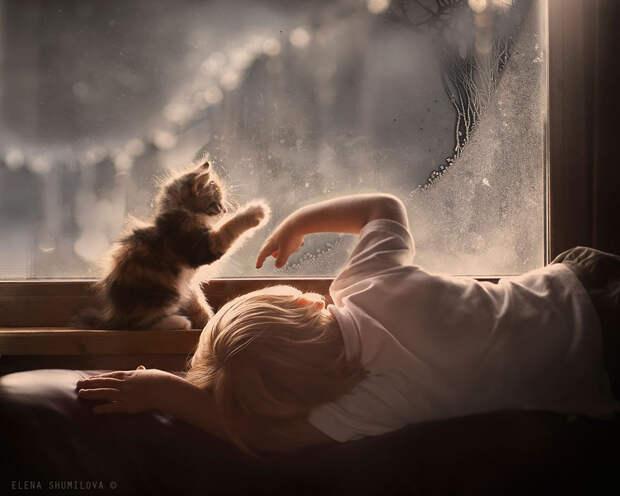 KidsWithAnimals01 Россиянка создает потрясающие фотографии своих детей с животными в деревне