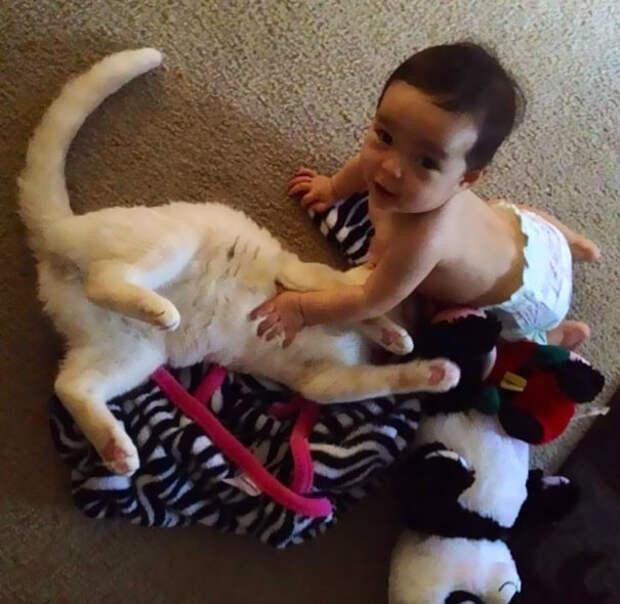 Кот всегда рядом с девочкой  девочка, дружба, кот
