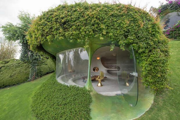 Органический дом-землянка